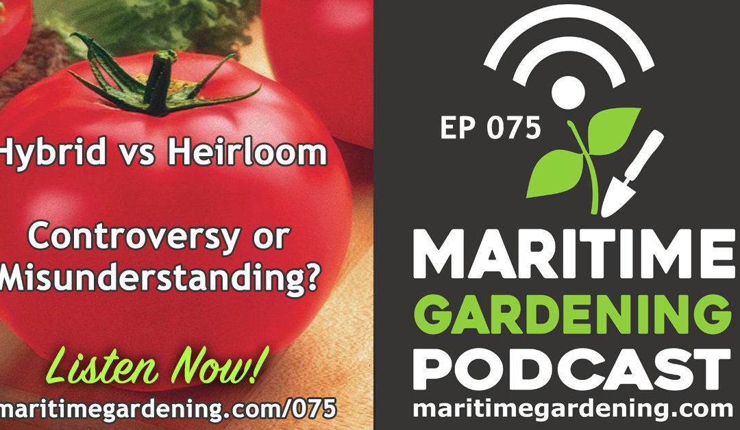 Maritime Gardening: Hybrid vs Heirloom – Controversy or Misunderstanding?