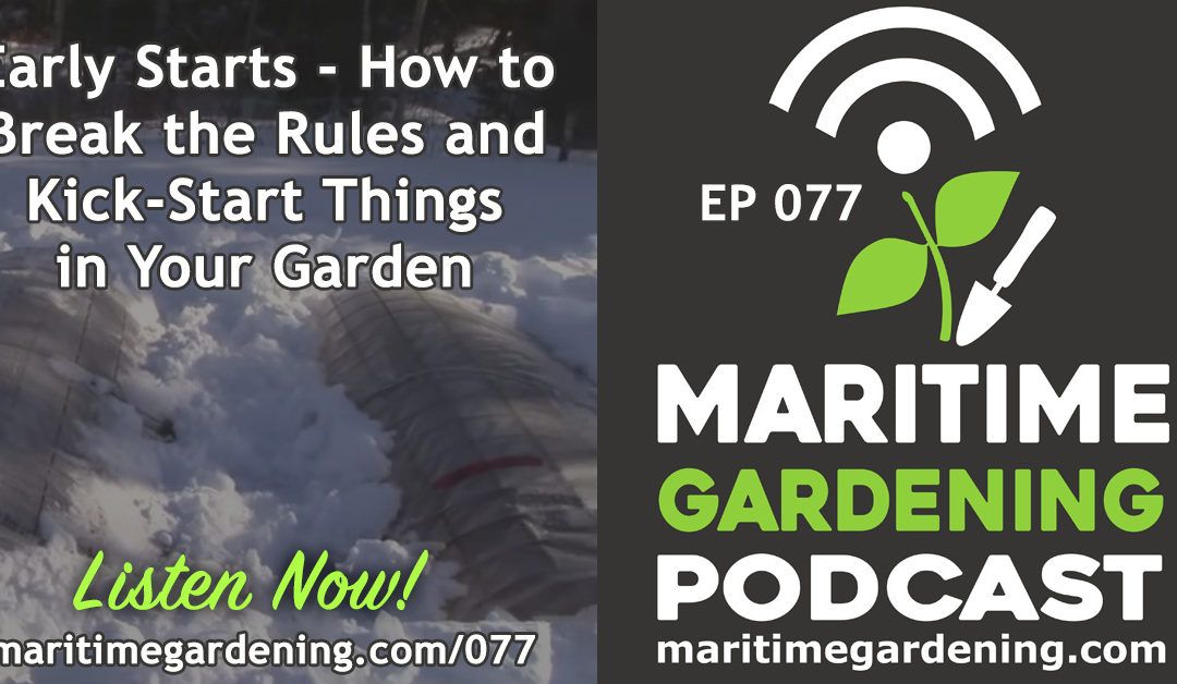 Maritime Gardening : Early Starts – How to Break the Rules and Kick-Start Things in Your Garden