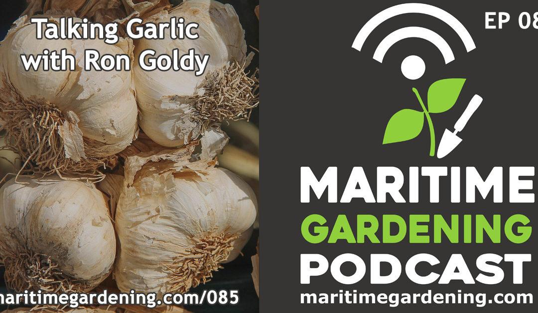 Maritime Gardening: Talking Garlic with Ron Goldy