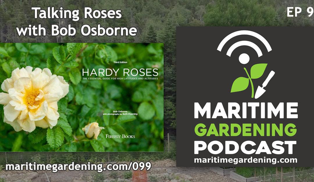 Maritime Gardening: Talking Roses with Bob Osborne